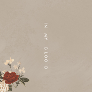 Shawn_Mendes_In_My_Blood